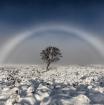 """Para ver un """"arcoíris blanco"""", uno debe tener el sol detrás."""