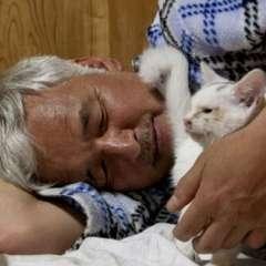 JAPÓn.- A pesar del riesgo, Naoto Matsumura tiene a su cargo a todas las mascotas de ese lugar.  Fotos: Web