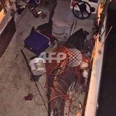 El animal, de 2,7 metros, cayó en su bote de 4,5 metros y se vio encajonado. Foto: AFP