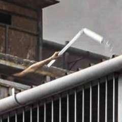Las dramáticas imágenes de uno de los jóvenes encerrados pidiendo ayuda. Foto: BBC