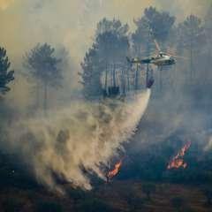 El 72% de Portugal está en sequía severa desde finales de junio. Foto: AFP