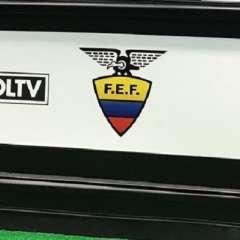 Se debera esperar 72 horas para conocer la resolución sobre la apelación presentada en el caso FEF-Gol TV.