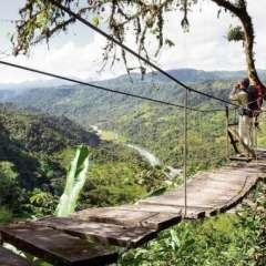 National Geographic destaca a Mindo como un destino para observar aves. Foto: Referencial