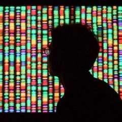 Los genes pueden definir mucho de lo que somos, pero no son el único factor.