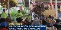 Televistazo 13h00 11-02-2020