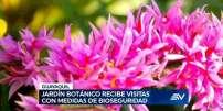 Televistazo 19h00 05-09-2020