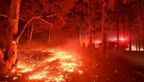 El suelo incendiado impide a los bomberos a hacer su trabajo en la ciudad de Nowra,Nueva Gales del Sur . Foto: SAEED KHAN / AFP