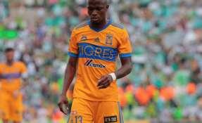 El delantero ecuatoriano milita en Tigres de México desde el 2017.