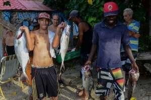 Los pescadores cargan pescado en la playa de Chichiriviche de la Costa