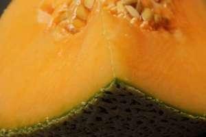 Todas las personas afectadas con la bacteria habían comido melón, dicen las autoridades australianas.