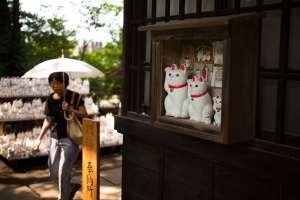 El templo tiene cerca de 10.000 figuras de estos gatos blancos. Foto: AFP