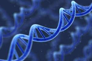 La condición empeora con la edad, de acuerdo a científicos