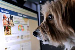"""La red social crea distintos """"perfiles"""" y te muestra contenido específico según el grupo al que perteneces."""