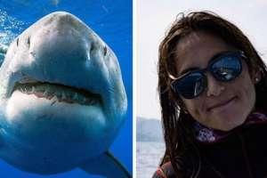 Kimberly Jeffries era parte del equipo que nadó con el enorme tiburón blanco en Hawái.