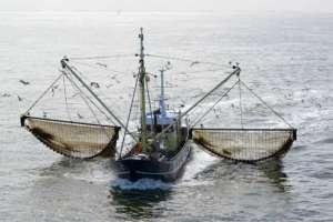 Quienes emplean esta técnica argumentan que es ecológica porque los buques de arrastre utilizan mucho menos diésel. Foto: UE