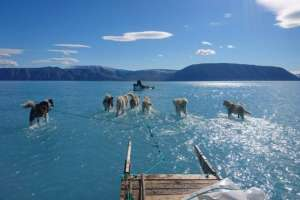 El científico del clima Steffen Olsen tomó la impactante fotografía.