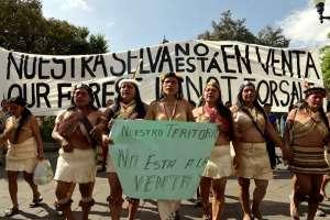 Indígenas waorani protestan en Quito en defensa de fallo. Foto: AFP