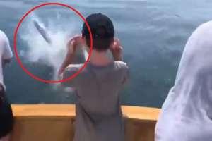 El suceso ocurrió en las aguas frente a Cape Cod Bay.