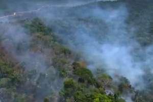 Brasil lidera el ranking regional de focos de incendios. Foto: Captura