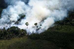 Hasta agosto se han registrado 75.336 focos de incendio en Brasil. Foto: AFP