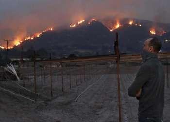 Un habitante de Ventura observa el desastre por los incendios.  Foto: Los Ángeles Times