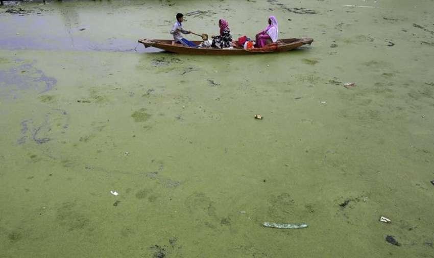 Una familia cachemirí atraviesa las aguas contaminadas del lago Dal para poder regresar a su casa en Srinagar, capital estival de la Cachemira india. EFE