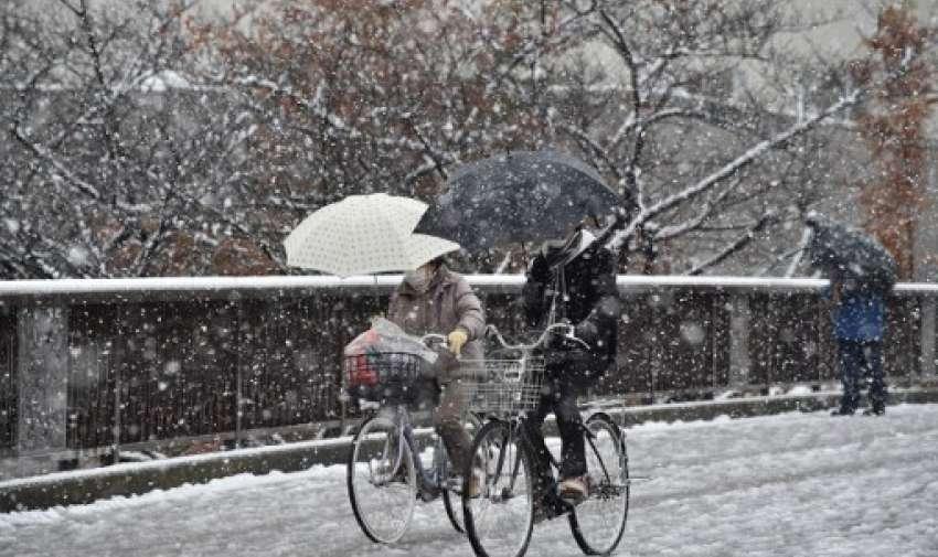 Tokio se despertó el 24 de noviembre con su primera nevada de noviembre en más de medio siglo, dejando a los viajeros lidiar con trastornos del tren y calles manchadas.