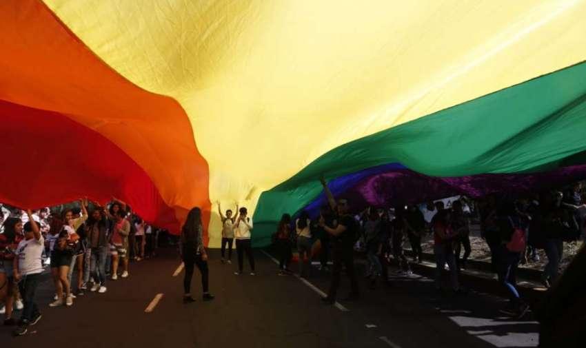 Miembros de la comunidad LGBT marcharon en defensa del matrimonio igualitario.