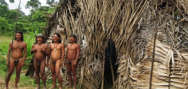 ¿Quiénes son los huaoranis y los taromenanes y que territorio ocupan del país?