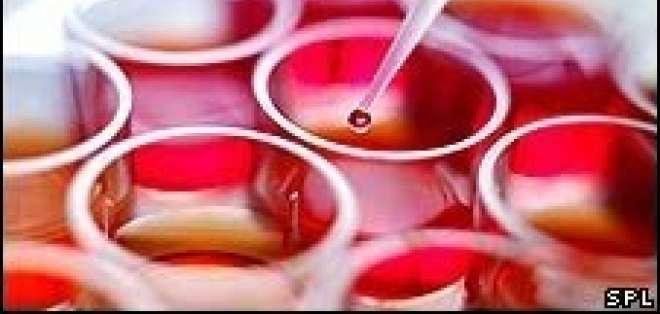 Las células utilizadas provienen de embriones humanos sobrantes de los tratamientos de fertilidad.