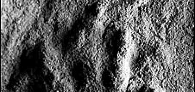 Las huellas fosilizadas fueron encontradas en unas rocas de 250 millones de años en Polonia.