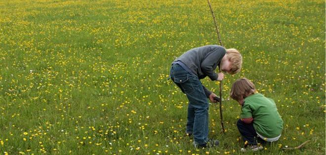 Cinco ideas para que los niños urbanos se conecten con la naturaleza. Foto: Tomada de la BBC