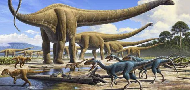 Se estudiaron los restos de casi 400 animales. Foto: Internet