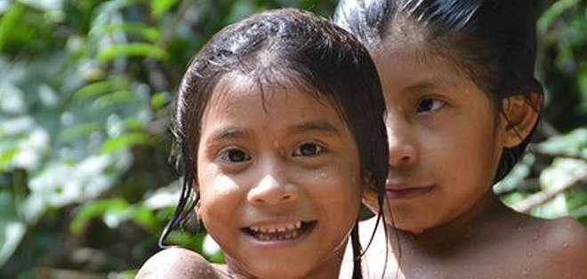 La destrucción de la selva cada vez deja menos espacio para la supervivencia de sus habitantes tradicionales.