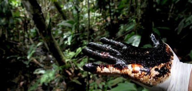 ECUADOR.- Según la ministra del Ambiente, la petrolera no ha cumplido su compromiso de sanear 264 piscinas de desechos. Foto: Archivo
