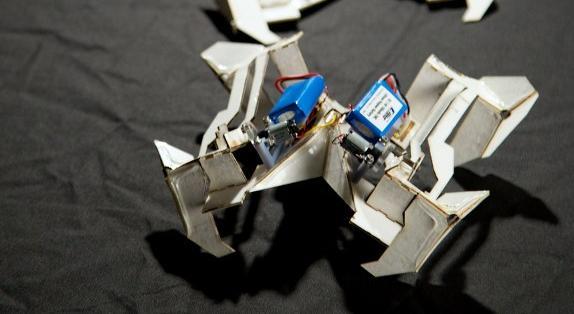 JAPÓN.- Este nuevo tipo de robos podría ser usado para la exploración espacial, deslizarse bajo escombros en labores de rescate. Foto: AFP