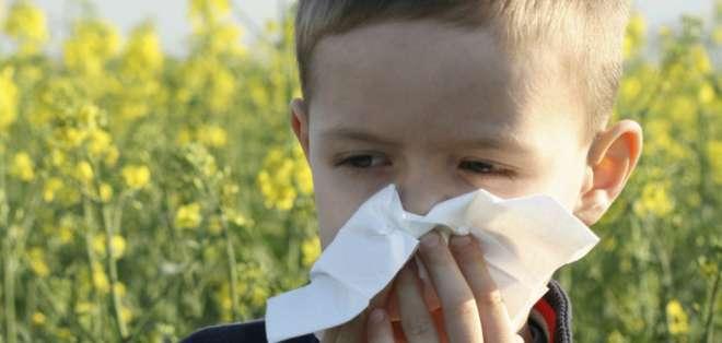 El sedentarismo, los partos por césarea, exceso de antibióticos, entre otros factores, son los culpables de este incremento de alergias.