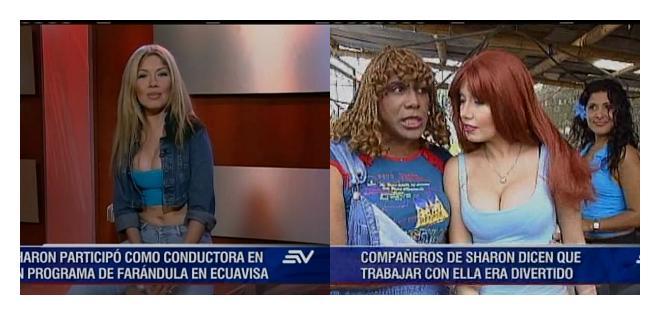 La artista participó en producciones como Sharon y los especialistas y Dora, la vulcanizadora.