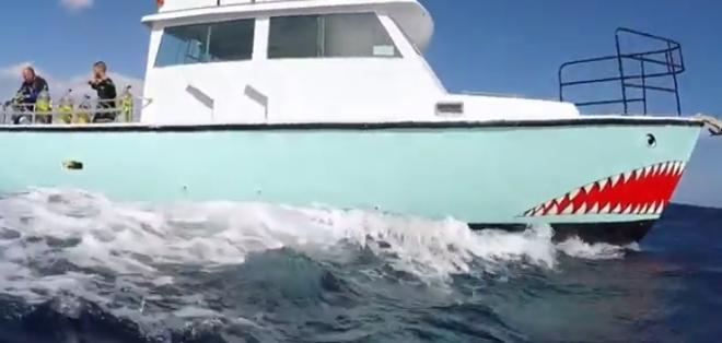 Shark Addicts toma como lugar de referencia a Jupiter en Florida, Estados Unidos, por la enorme cantidad de tiburones que ahí existen.