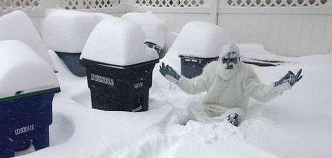 Un misterioso Yeti o Abominable Hombre de las Nieves ha sido visto en la ciudad de Boston.