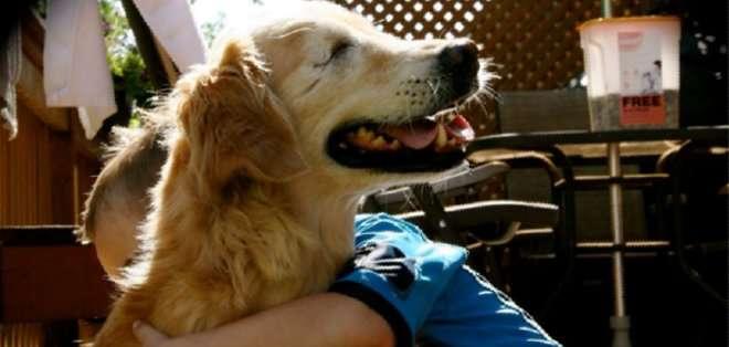 Smiley nació sin ojos, pero eso no le ha impedido empatizar con las personas, llegando a ayudar a gente con discapacidad y enfermos mentales.