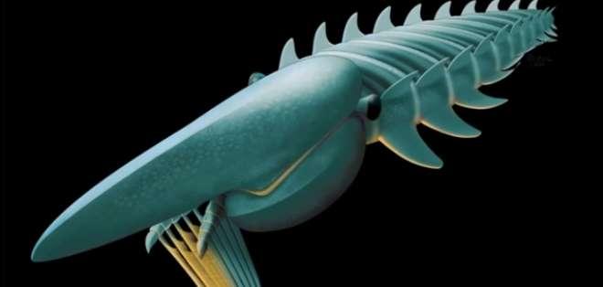 La nueva especie fue descubierta por paleontólogos de la Universidad de Yale y Oxford.. Fotos: Captura de Pantalla
