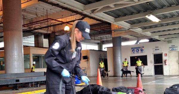 Dallyana Passailaigue muestra el trabajo de policías antinarcóticos junto a canes adiestrados.