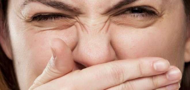 El hipotálamo determina qué olores nos gustan y cuales no.