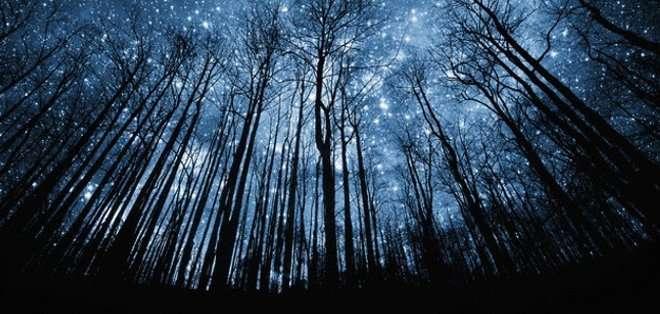 Estas 'estrellas fugaces' llevan sobrevolando nuestro planeta desde hace 2.600 años, dato que se conoce gracias a las crónicas chinas de la época.