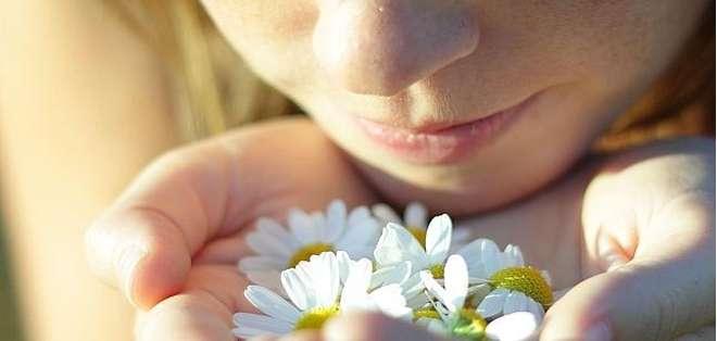 EE.UU.- Si quieres saber cuánto más vas a vivir, tu nariz podría tener la respuesta. Foto: Web.