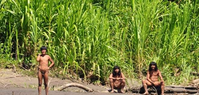 Un indígena de la tribu Mascho-Piro ha matado a otro de la Shipetiari.