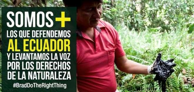Quito:_ La campaña #BradDoTheRightThing (Brad haz lo correcto) pretende disuadir a la estrella.  Foto: Twitter Somos Más.