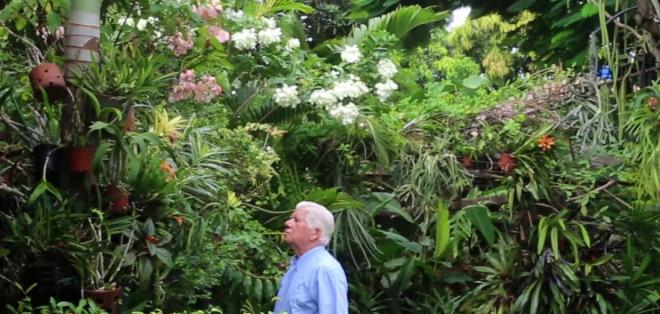 Ecuavisa for Programacion jardin botanico