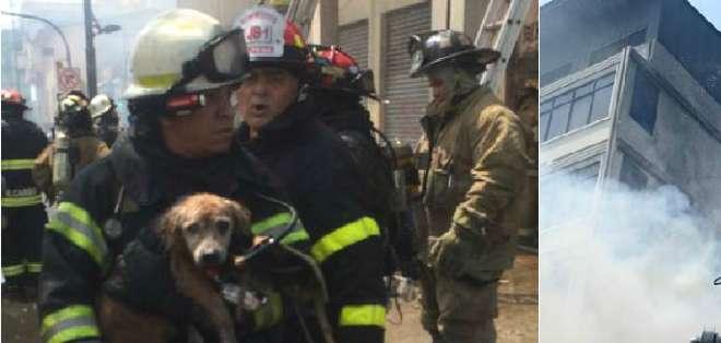 GUAYAQUIL, Ecuador.- El Cuerpo de Bomberos de la ciudad rescató a dos personas y un perro en el inmueble del siniestro. Fotos: Carlos Pincay y Bomberos de Guayaquil
